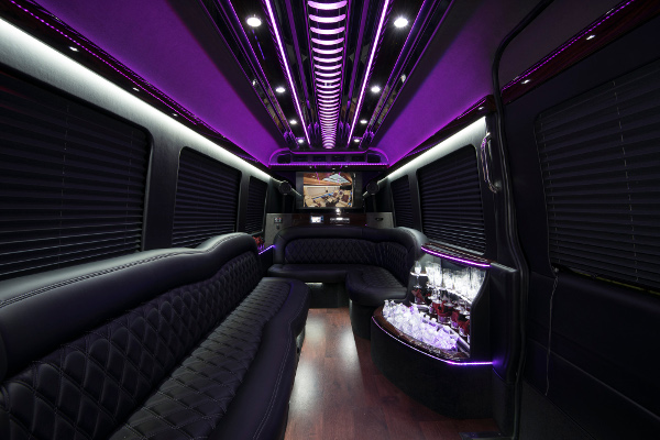 12 Passenger Party Buses Lake Mary
